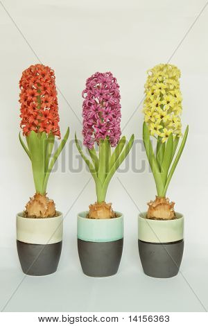 Artificial hyacinth clay flower