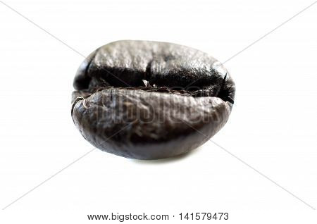 A coffee seed, commonly called coffee bean is a seed of the coffee plant