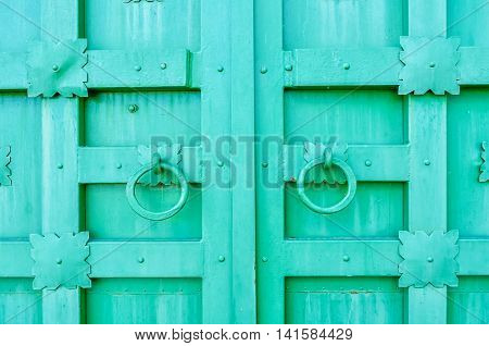 Metal bright green aged textured door with rings door handles and metal details in form of stylized flowers. Metal architecture background.
