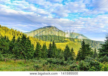 Bright picturesque Carpathian mountains landscape view the Petros mount Ukraine