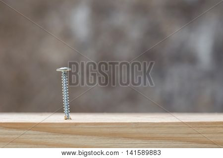 Screw screwed into wooden plank closeup. Construction concept