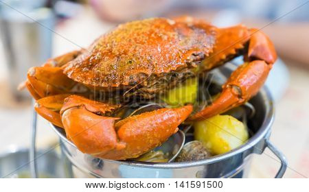 Cooked Boiled Giant Crab in metal Bucket.