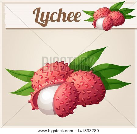 Lychee fruit. Cartoon vector Icon. Series of food and drink and ingredients for cooking.