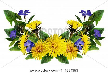 Dandelion and periwinkle flowers arrangement isolated on white