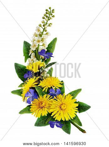 Dandelion bird-cherry tree flowers and periwinkles arrangement isolated on white