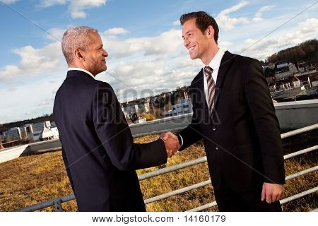 Business handshake over the deal