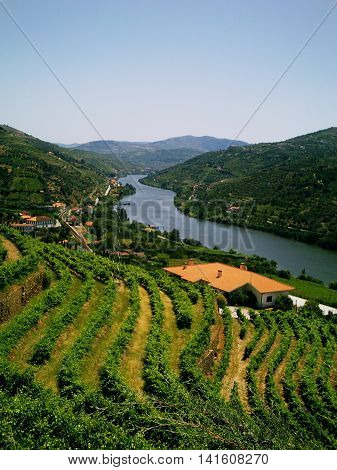 the most beautiful Douro River and its unique landscape