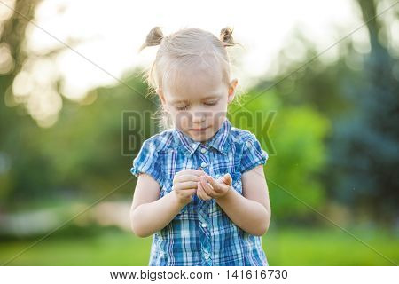 Little cute girl looking at ladybird on her hand
