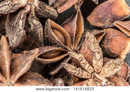 Star Anise Seeds in Pod spread across image
