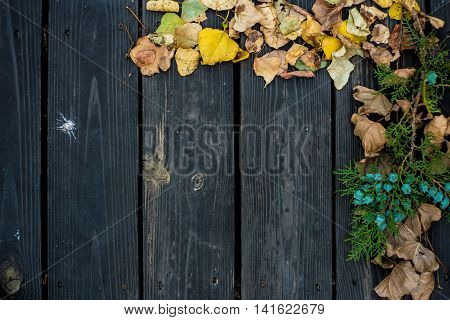 Autumn On A Beautiful Wooden Background.