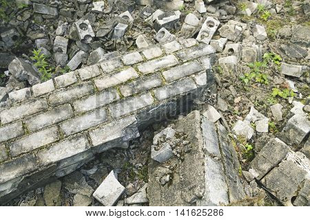 old broken brick wall with moss in the forest