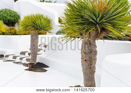 Architecture With Lavastones On Lanzarote Canarian Island Spain
