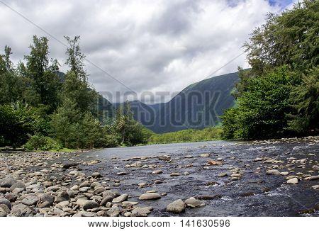 Open stream in Waipio Valley on Big Island of Hawaii