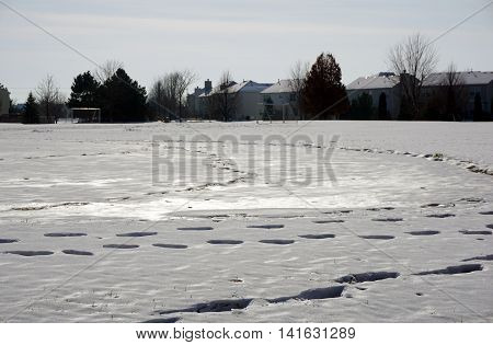 Fresh footprints in the snow in a residential area of Joliet, Illinois during November.