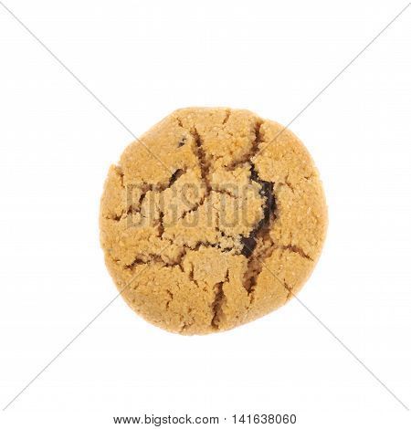 Single soft chewy chocolate chip cookie isolated over the white background