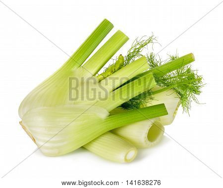 Fresh Fennel Isolated On The White Background