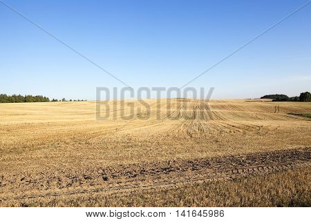 agricultural field, which is going to cook and on about other options, ie themselves cause harm