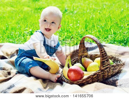 baby having a picnic in the summer park