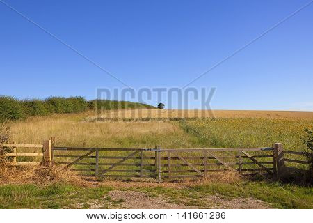 Gated Arable Field