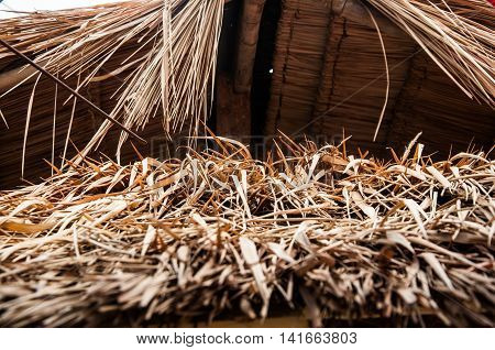 Thatched roof at the hut in the countryside