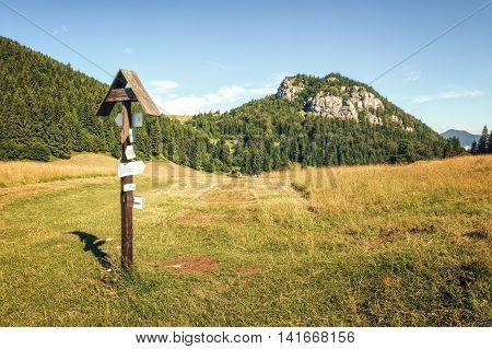 Meadows near Malino Brdo in Great Fatra (Velka Fatra) National Park Slovakia