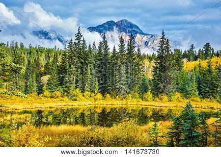 Warm autumn day in Jasper Park, Canadian Rockies. Lake amongst the evergreen forests, yellowed shrubs and distant mountains