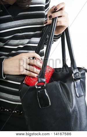 Closeup Female's Hands Puts Purse In The Bag