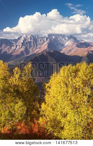 Autumn landscape. Top Ushba in clouds. Birch forest on the hillside. View from Mount Mkheer. Main Caucasian ridge. Zemo Svaneti, Georgia. Art processing of photos. Color toning