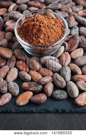 Cacao Beans And Cacao Powder