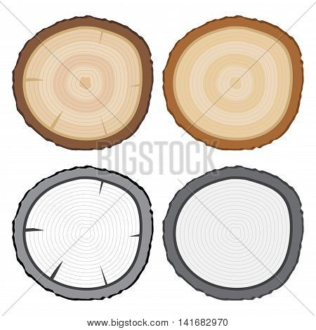 Vector stock of tree rings or tree stump in color and black and white