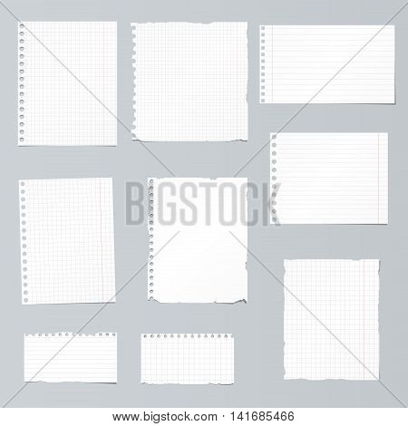 Set of ripped white, ruled, math notebook paper are stuck on gray background.