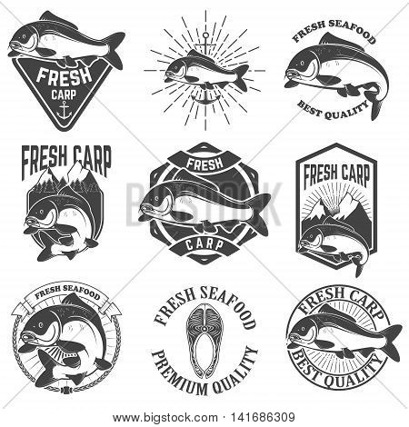 Set of the fresh carp labels emblems and design elements. Carp fishing. Design element for logo label emblem sign. Vector illustration.