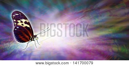 The light touch of a butterfly - butterfly in resting closed position on left side beside a burst of white light on a multicolored radiating wide background