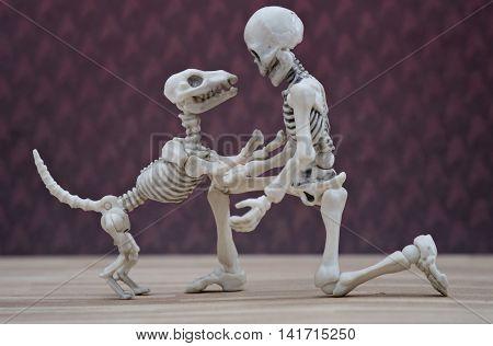 A Skeleton and his skeleton dog playing