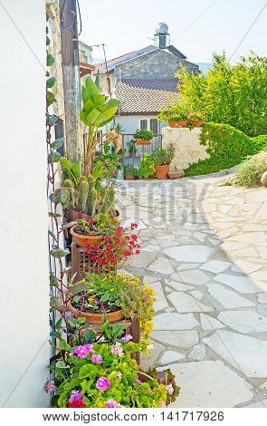 The most popular decorations of the mountain villages in Cyprus are the flowers in pots standing next to the houses and stone fences along the narrow streets Kato Drys Cyprus.