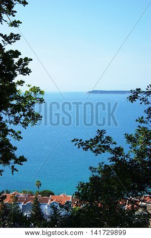 Sea view through the branches of deciduous trees