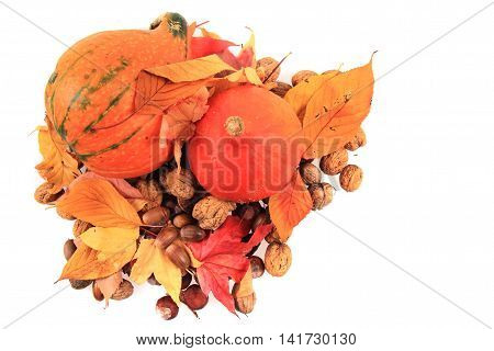 Autumn Pumpkins And Leaves Isolated