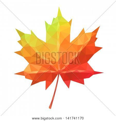 Low poly vector maple leaf geometric pattern