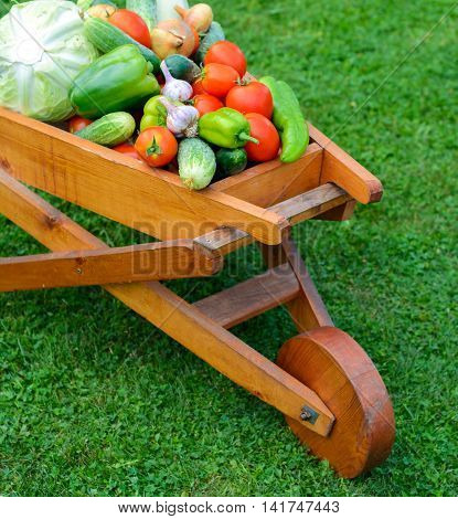 wooden wheelbarrow full with fresh vegetables scandinavian house in background.