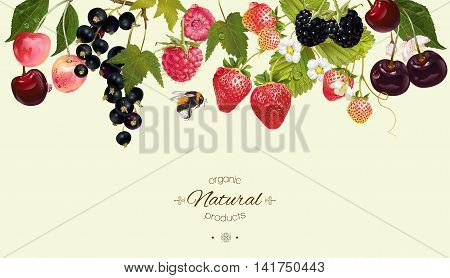 Vector berry horizontal border. Background design for juice, tea, natural cosmetics, bakery with berry filling, farmers market, grocery , health care products. Best for packaging design.