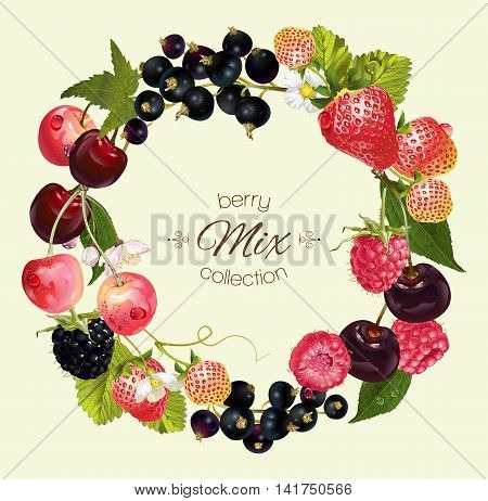 Vector berry round wreath frame with raspberry, cherry, strawberry and black currant. Design for natural cosmetics, beauty store, vegetarian menu, organic health care products, aromatherapy, perfume