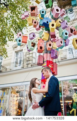 Wedding Couple Near Colored Tree Starling Boxes