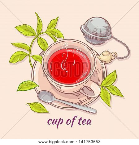 vector illustration with cup of tea tea spoon and tea-strainer on color background