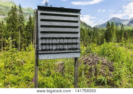 Insect trap to protect the remaining forest.