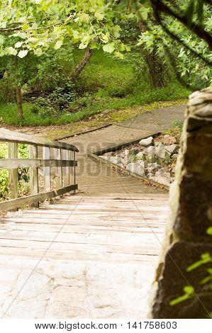 park stone wood stairway in forest walk