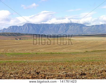 Farming Area, Western Cape, South Africa 01