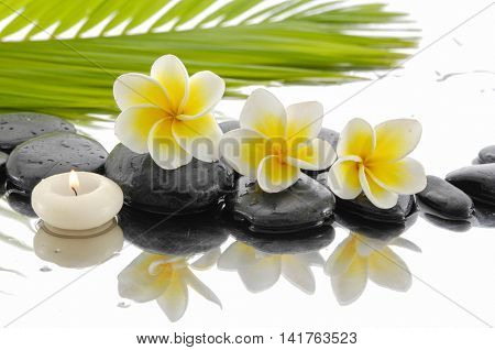 Spa still life with frangipani ,palm and black stone,candle