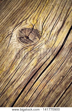 abstract background or texture wooden board in knot