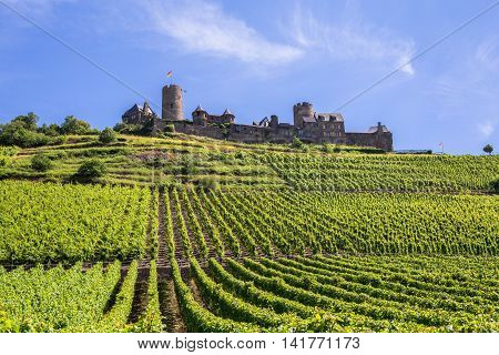 Burg Thurant at the Mosel vineyards with blue sky