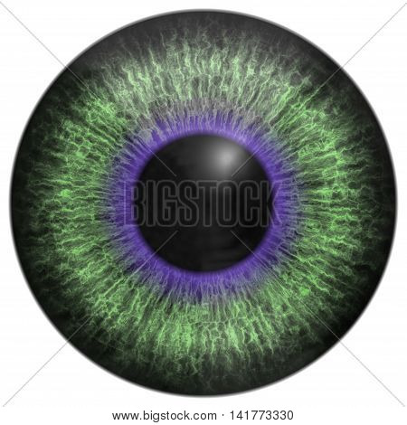 Eye green iris generated hires texture on white